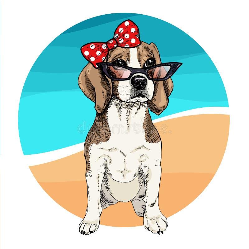 Vector portrait of beagle dog wearing sunglasses and retro bow. Summer fashion illustration. Vacation, sea, beach, ocean. Hand drawn pet portait. Poster, t vector illustration