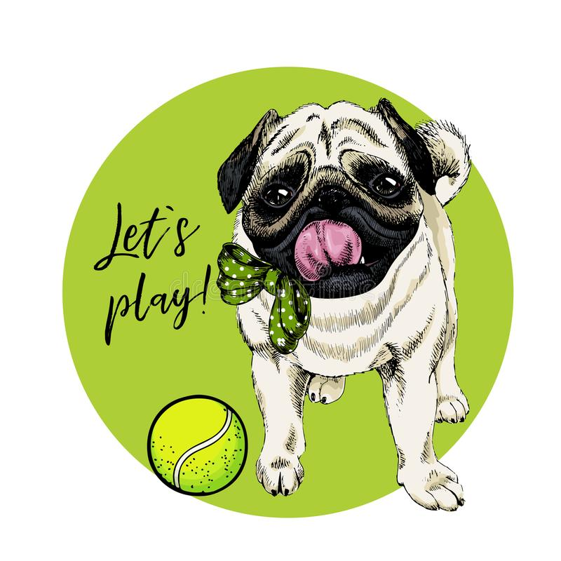 Vector portrait of pug dog with tennis ball. Let s play. Green curveball and background. Summer cartoon illustration royalty free illustration