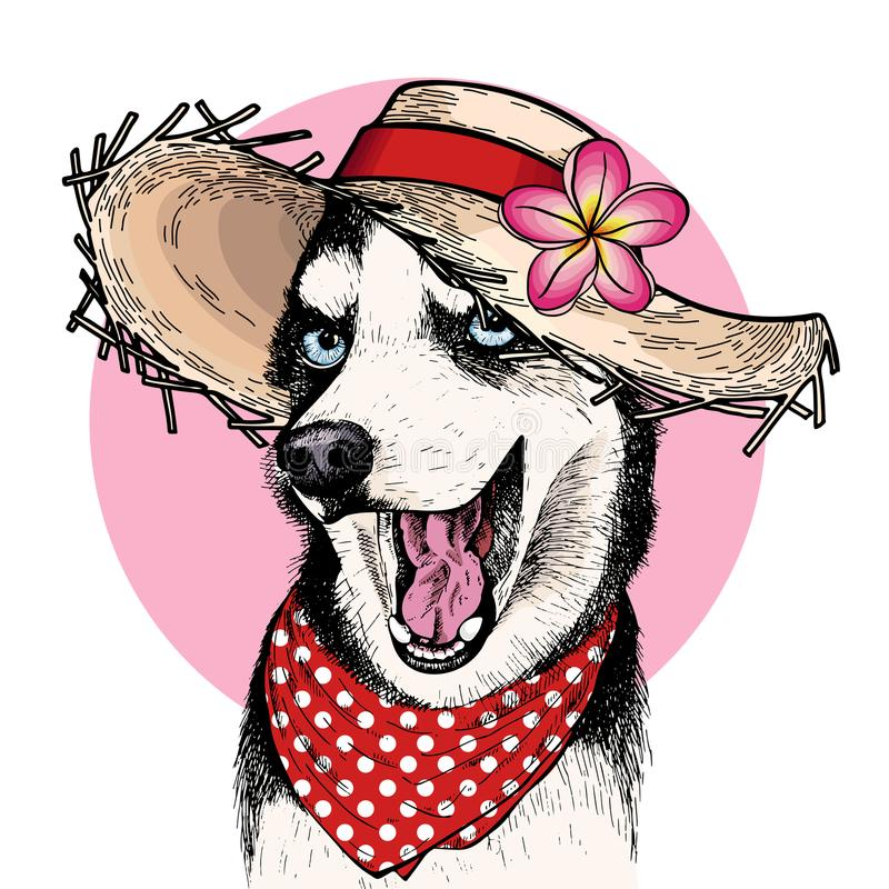 Vector portrait of Siberian husky dog wearing straw hat, flower and polka dot bandana. Summer fashion illustration. Hand vector illustration