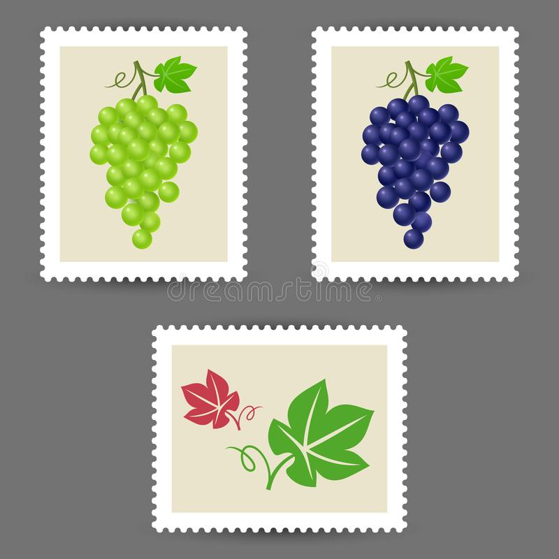 Vector postage stamps with grape bunch icons stock illustration
