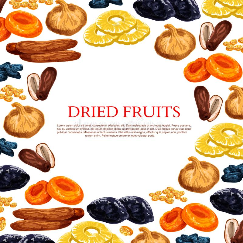 Vector poster of dried fruits and dry fruit snacks. Dried fruits poster of sweet dry fruit snacks. Vector raisins, prunes or dried apricots, dates or figs and royalty free illustration