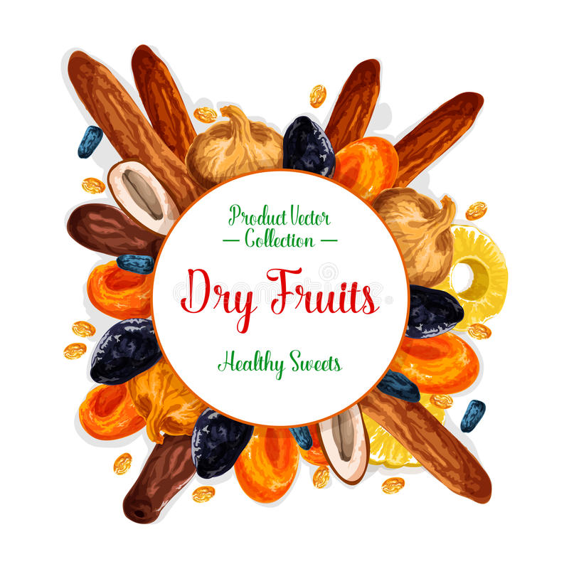 Vector poster of dried fruits and dry fruit snacks. Dried fruits or dry fruit snacks poster. Vector sweet raisins, prunes or pineapple and dried apricots, dates vector illustration