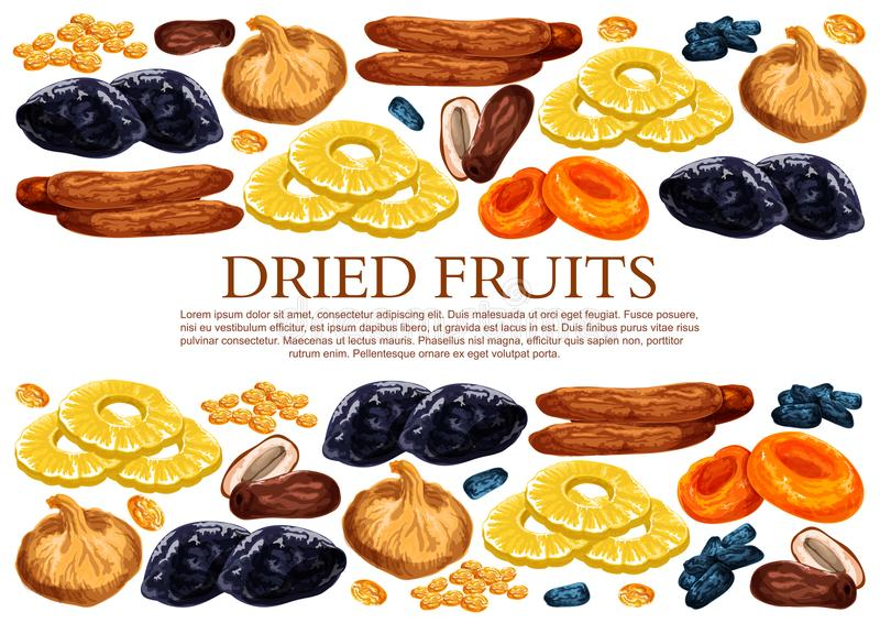 Vector poster of dried fruits snacks. Dried fruits poster template of sweet dry fruit snacks. Vector dried raisins, prunes or apricot and dates in sweet mix of royalty free illustration