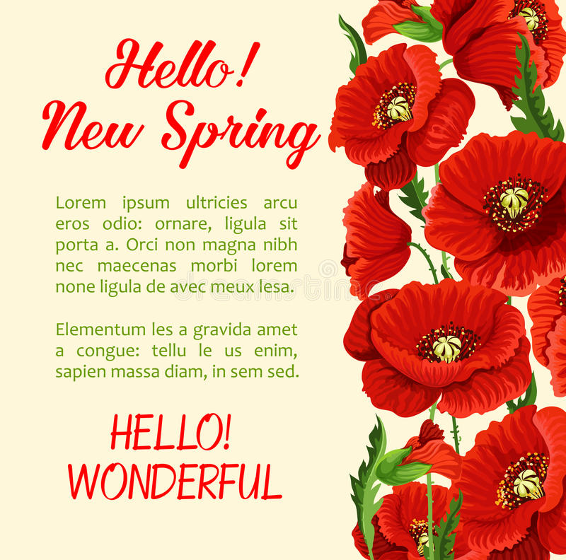 Download Vector Poster Of Poppy Flowers Hello Spring Quote Stock Vector    Illustration Of Flower,