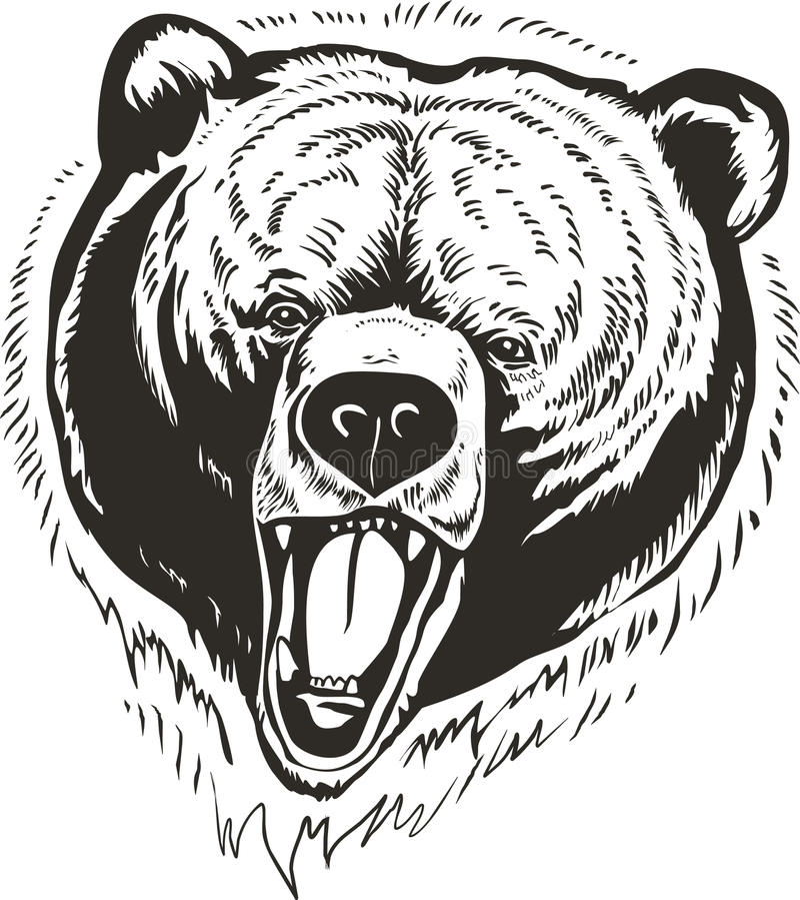 Vector principal del oso stock de ilustración