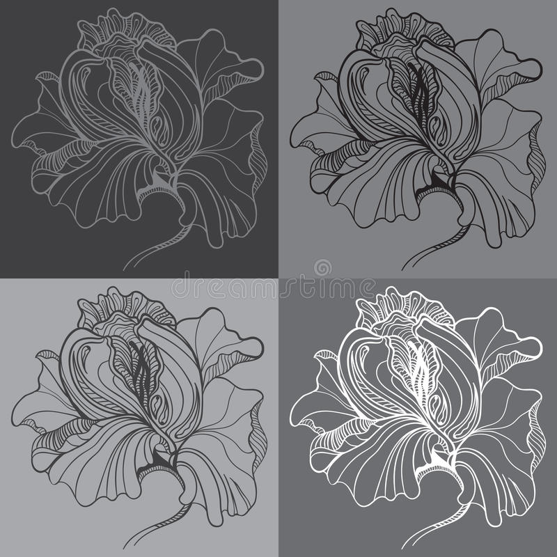 Vector print with four graphic monochrome flowers stock illustration
