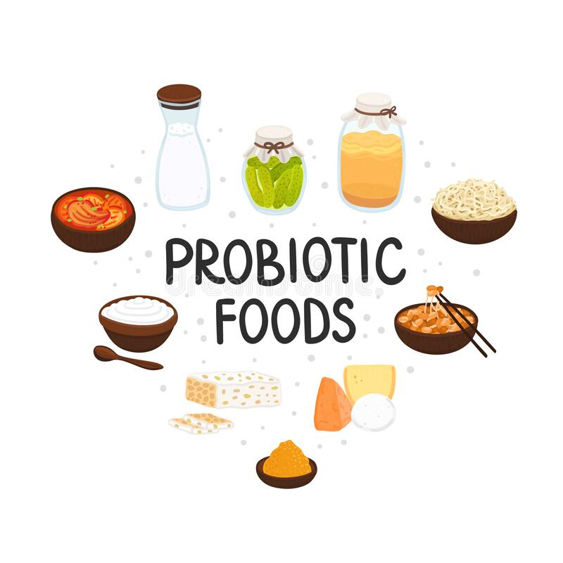 Free Vector Probiotic Foods. Best Sources Of Probiotics. Beneficial Bacteria Improve Health. Design Is For Label, Brochure Royalty Free Stock Photos - 181777388