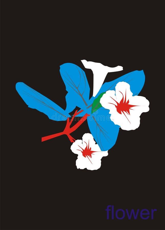 Vector que dibuja una flor salvaje imágenes de archivo libres de regalías