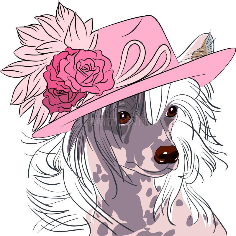 Vector a raça com crista chinesa do cão engraçado do moderno dos desenhos animados ilustração do vetor