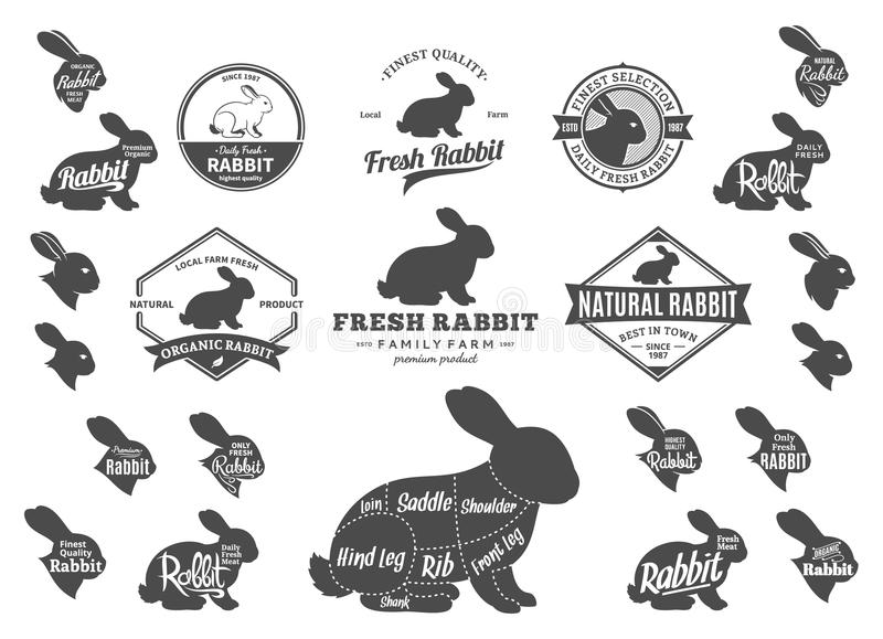 vector rabbit logo  icons  charts and design elements stock vector