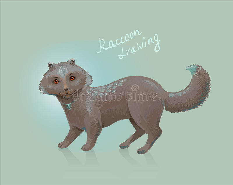 Vector raccoon. Sketch of fantastic animal. Unusual or exotic pe stock illustration