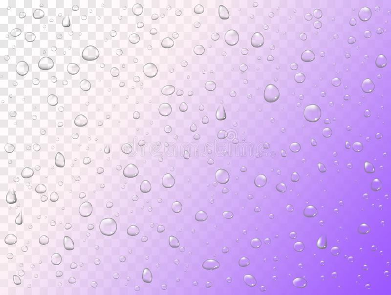 Vector rain water drops on transparent background. Pure droplets condensed. Realistic pattern on window glass surface royalty free illustration