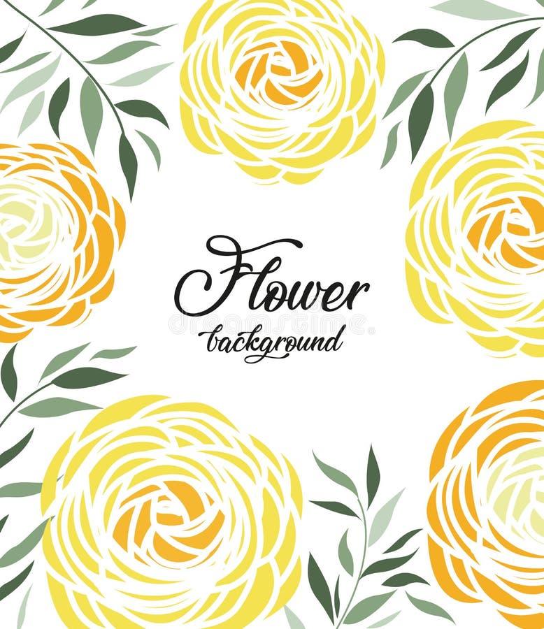 Vector ranunculus flower stock illustration