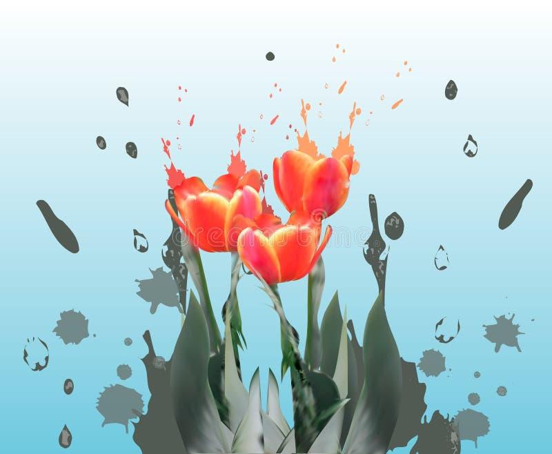 Vector realista de los tulipanes Plantilla del fondo de la tarjeta de la flor de la primavera Mujer que se casa el cartel floral  ilustración del vector