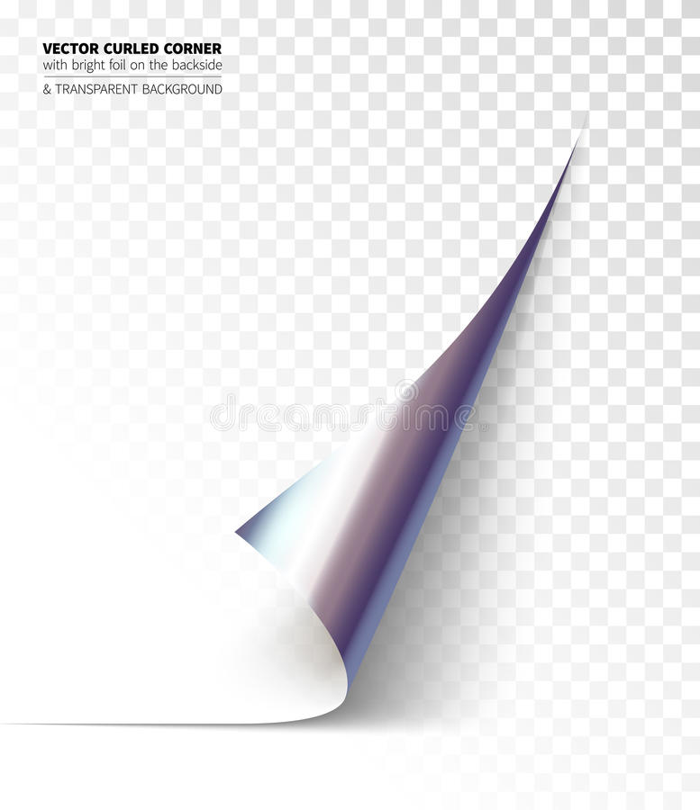 Vector realistic curled corner vector illustration