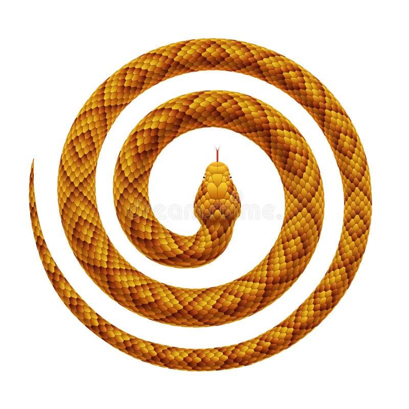 Vector realistische die illustratie van een slang in een spiraalvormige vorm wordt gekruld vector illustratie