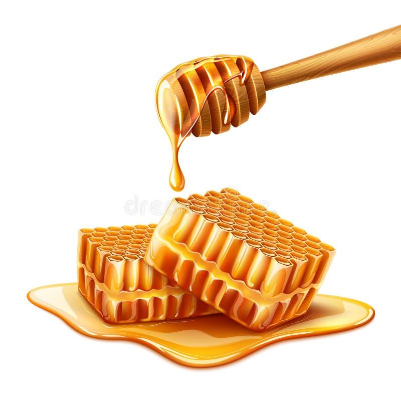 Vector realistische honing die van houten dipper druipen royalty-vrije illustratie