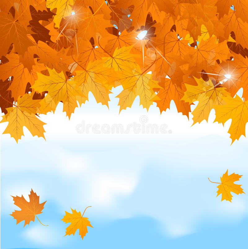 Vector red maple leaves on blue sky background