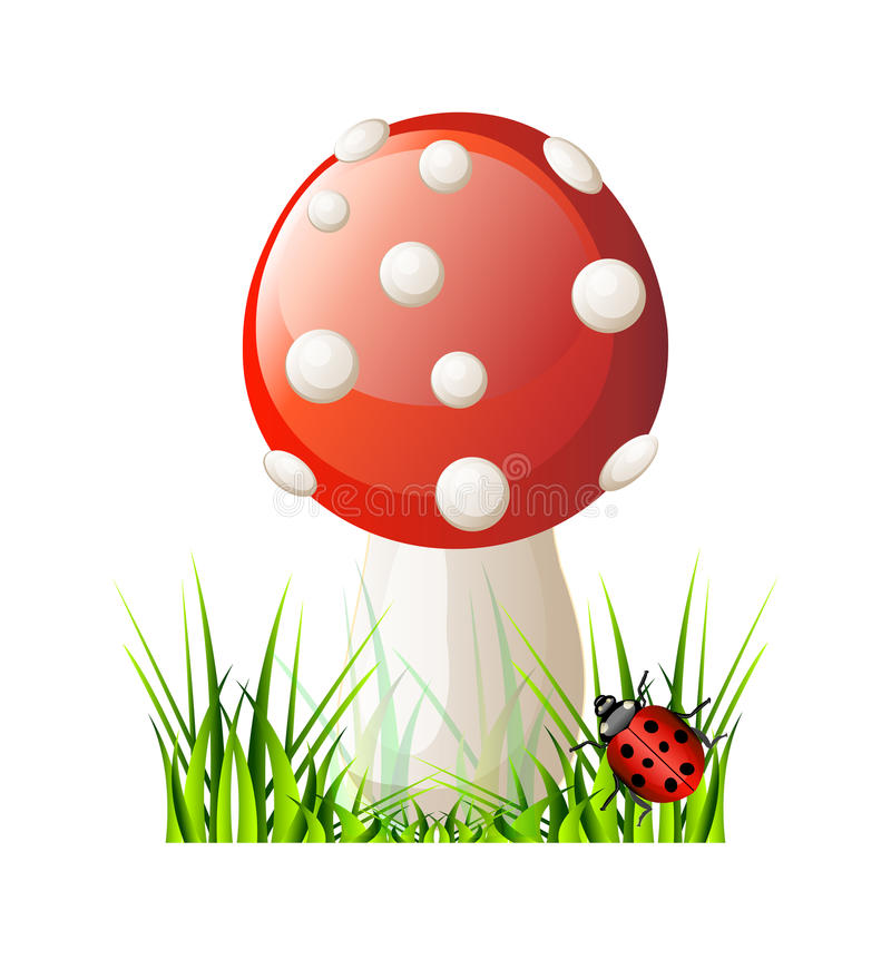 Download Vector red mushroom stock vector. Image of fungus, gourmet - 31062710
