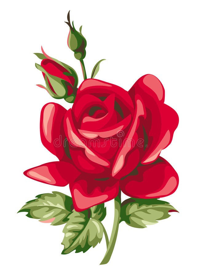 Vector red rose with bud. Decorative vintage flowers. vector illustration