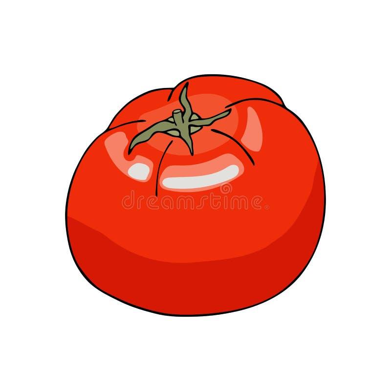 Flat Red Farm Logo Collection: Fresh Tomato. Cartoon Vector Icon Isolated On White Stock