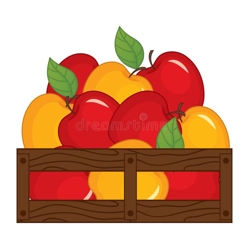 Vector Red and Yellow Apples in Wooden Box. Vector apples. Apples vector illustration stock illustration