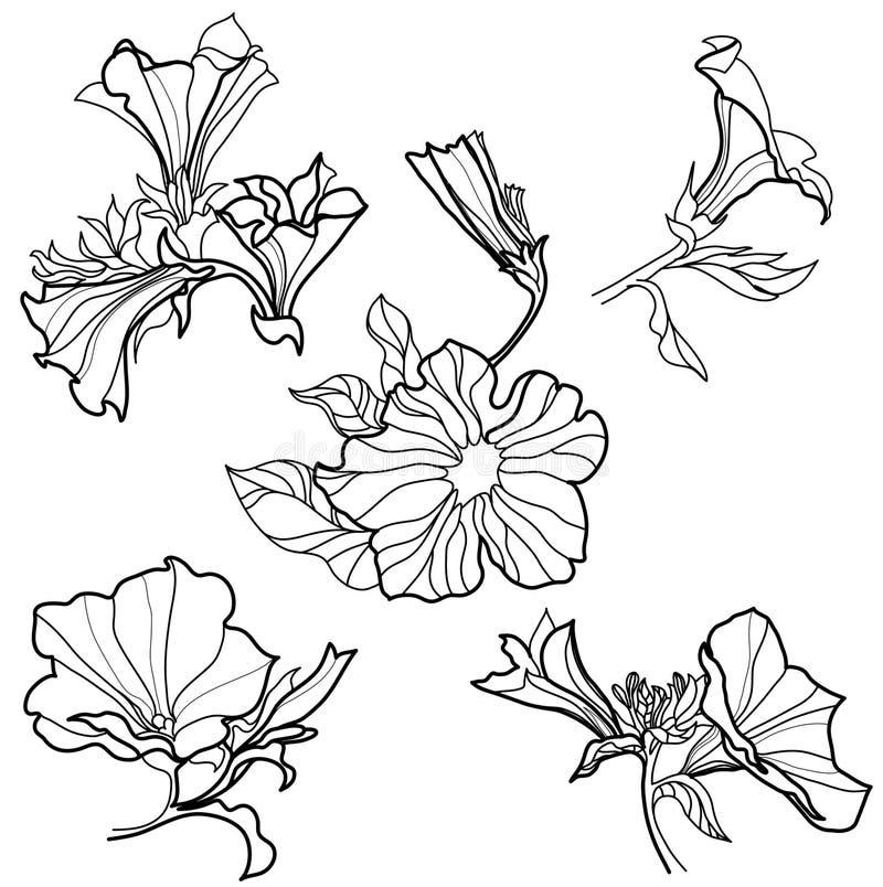 Vector reeks klok-bloemen royalty-vrije illustratie