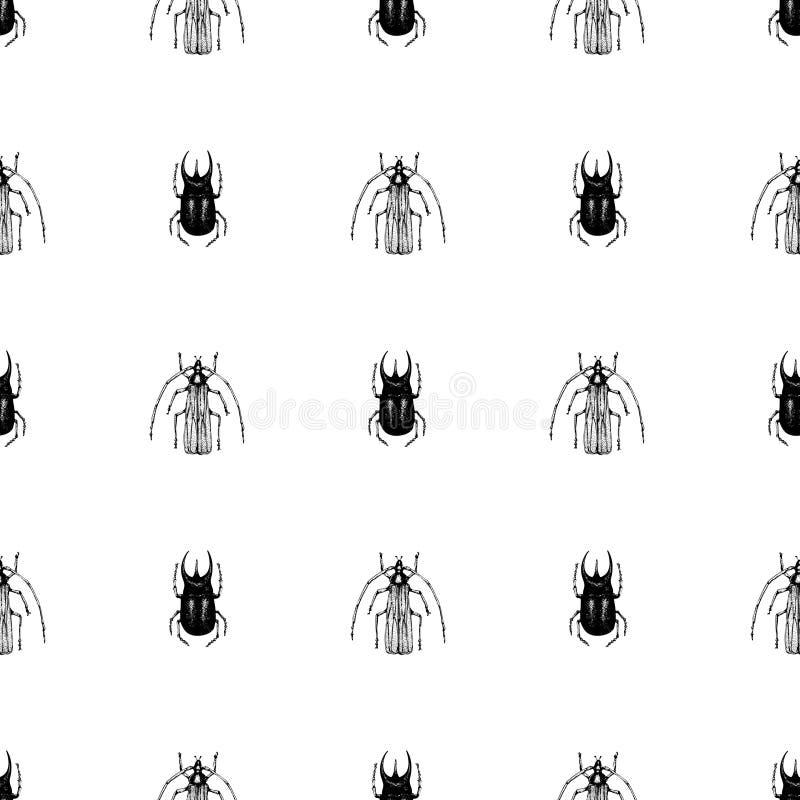 Vector retro hand getrokken naadloos vectorpatroon met kever, insect, dor, dorr, insect op een witte achtergrond wijnoogst royalty-vrije illustratie