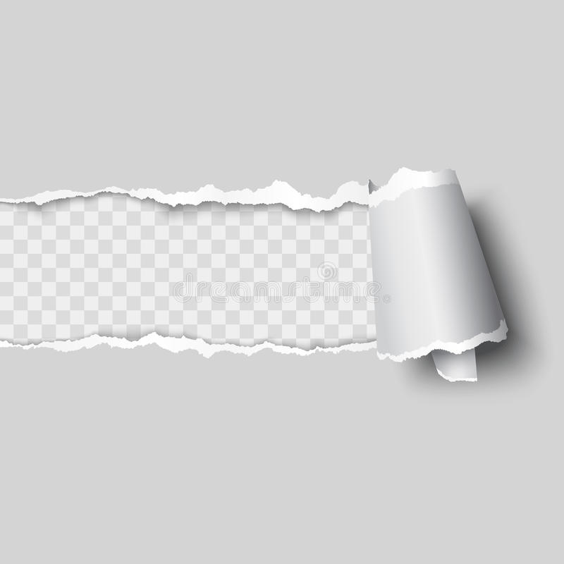 Vector ripped paper. Layered and editable vector illustration