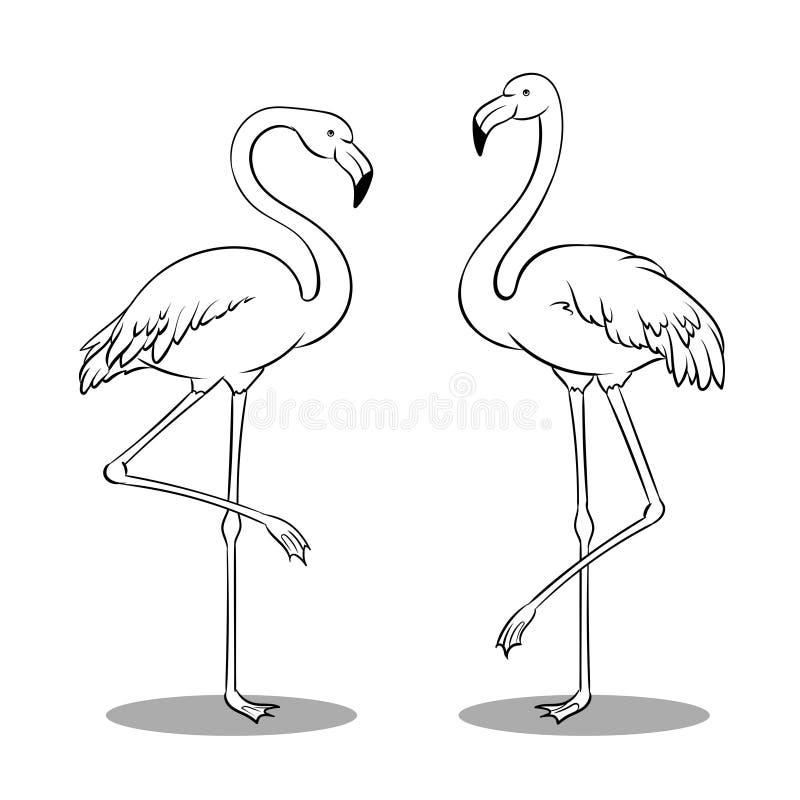 Famoso Pájaro Rosado Enojado Para Colorear Modelo - Dibujos Para ...