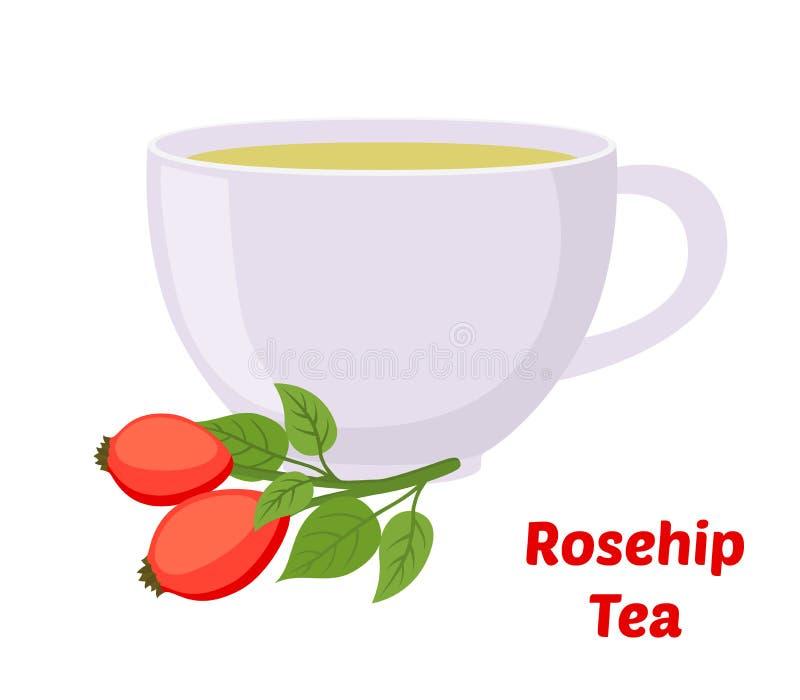 Vector rosehip, briar tea, rose haw cup. Cartoon flat style. Vector rosehip tea, rose haw cup, medical herbal plant. Organic vegetarian briar tea. Made in stock illustration