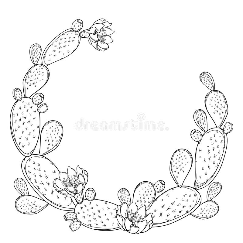 Free Vector Round Frame Of Outline Indian Fig Opuntia Or Prickly Pear Cactus, Flower And Spiny Stem In Black Isolated On White. Stock Image - 145317701