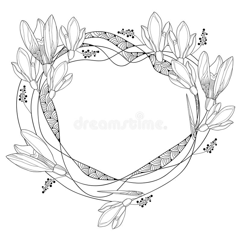 Vector round frame with ornate outline Snowdrop flowers or Galanthus isolated on white back. Floral elements for spring design. vector illustration