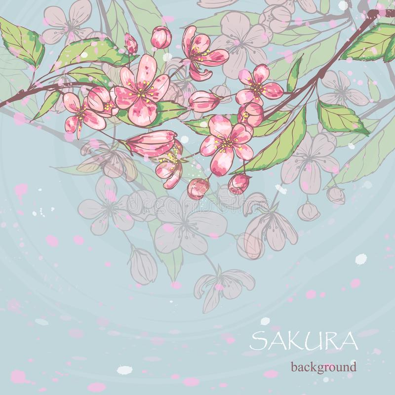 Vector sakura background. Spring time. Blossoms and leaves on tree branches royalty free illustration