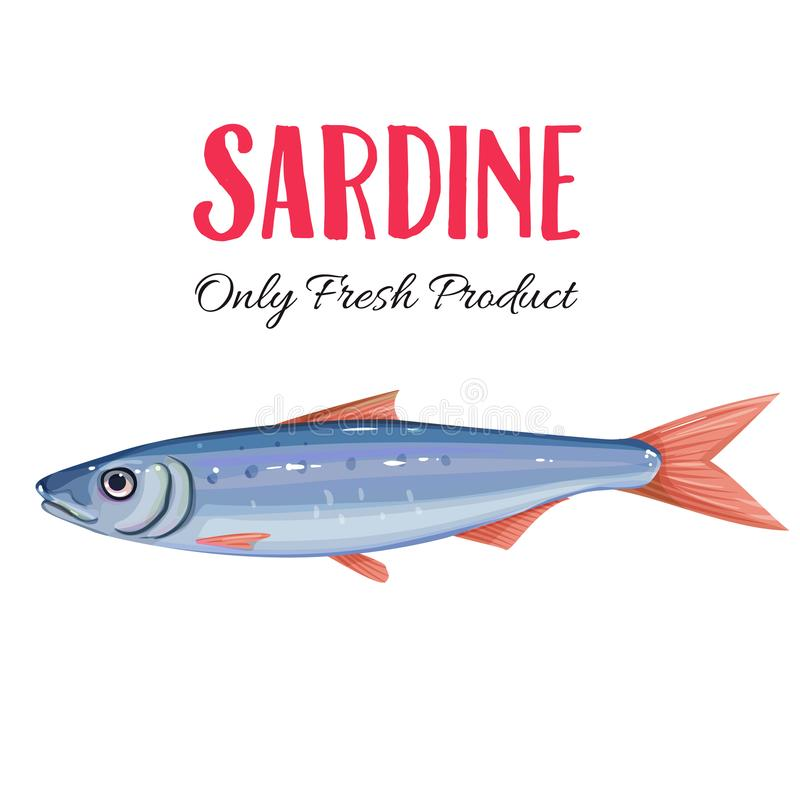Vector sardine. Icon badge fish for design seafood packaging and market royalty free illustration
