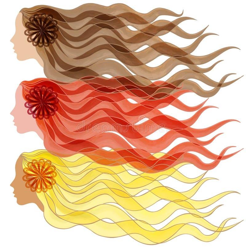 Vector Schattenbild der Illustration drei das Haar und das Gesicht der Frauen von Brunette und von blonder Rothaarigen vektor abbildung