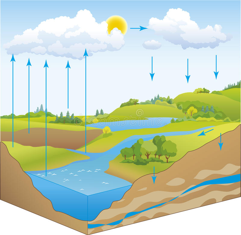 Vector scheme of the water cycle in nature vector illustration