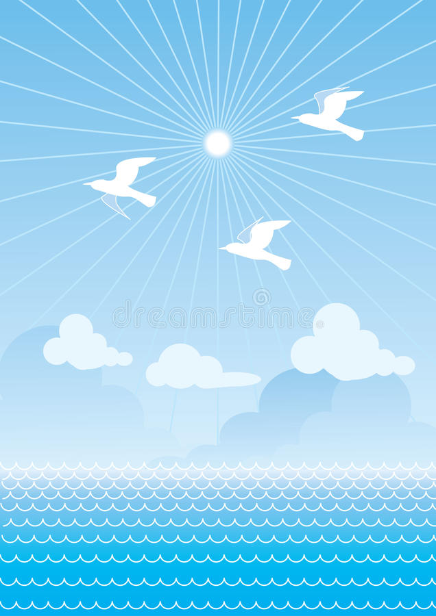 Vector sea and birds.Sunset stock photo