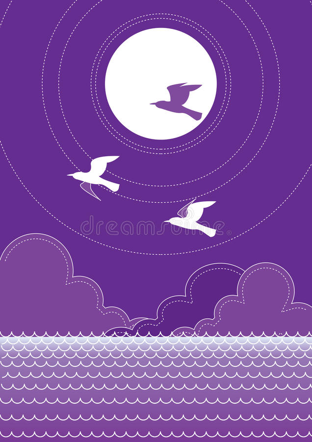 Vector sea and birds.Sunset stock images