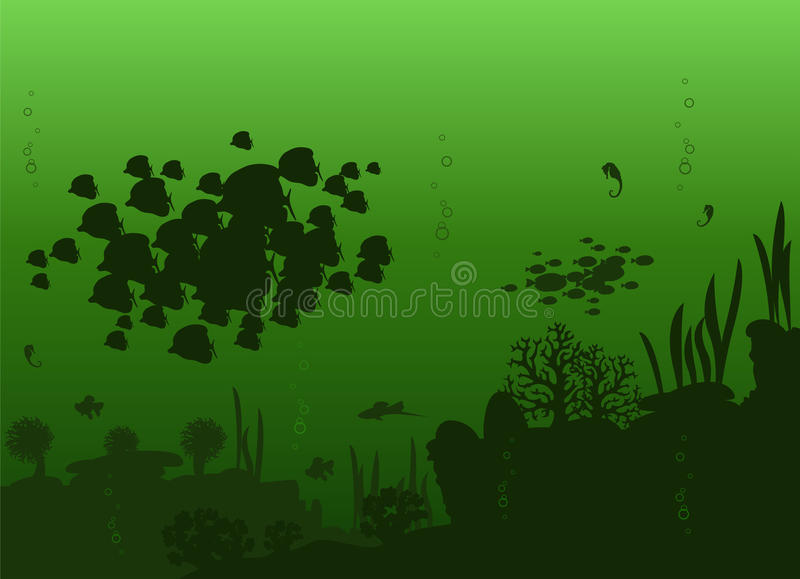 Vector of sea fishes. Vector illustration of beautiful of sea fishes on a bright green background with algae and stones royalty free illustration