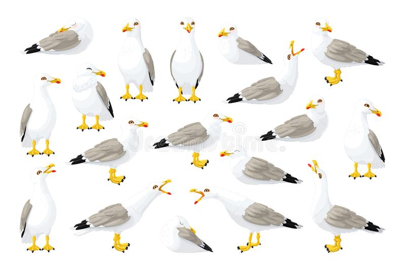 Vector seagull sea gull set. Vector cartoon seagull sea gull cliparts set. Graphic objects collection royalty free illustration