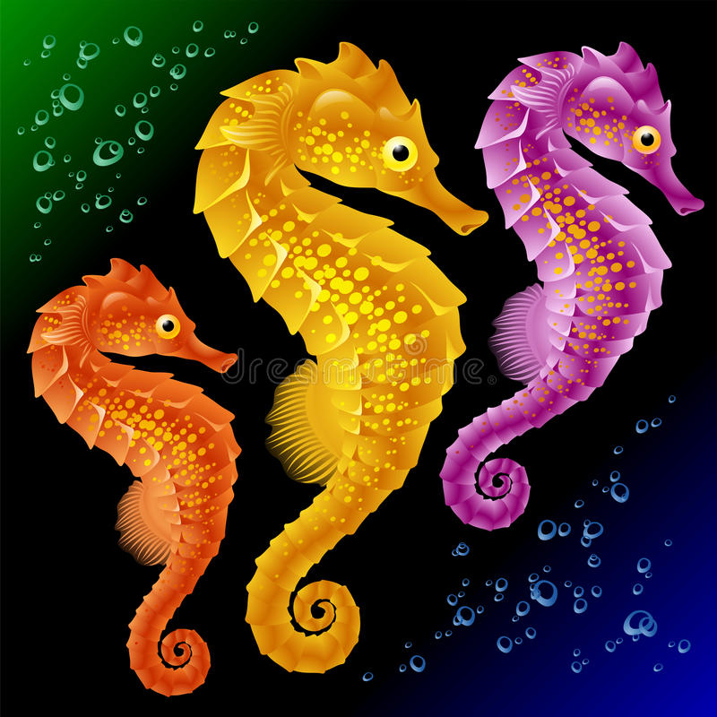 Vector Seahorses stock illustratie