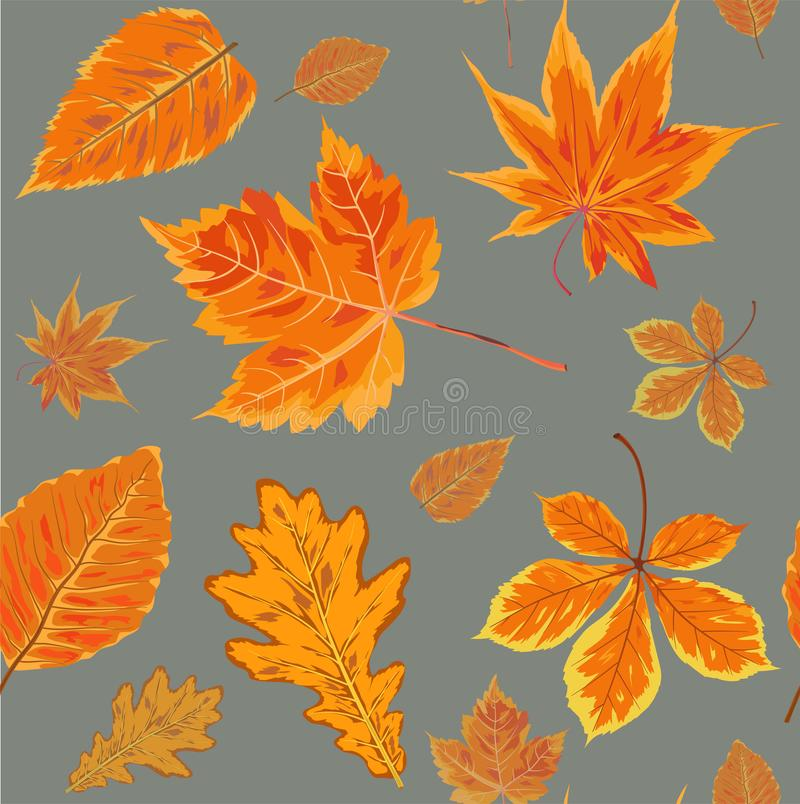 Vector Seamless Autumn fall season patten background floral watercolor style with colorful falling orange yellow leaves of fores stock illustration