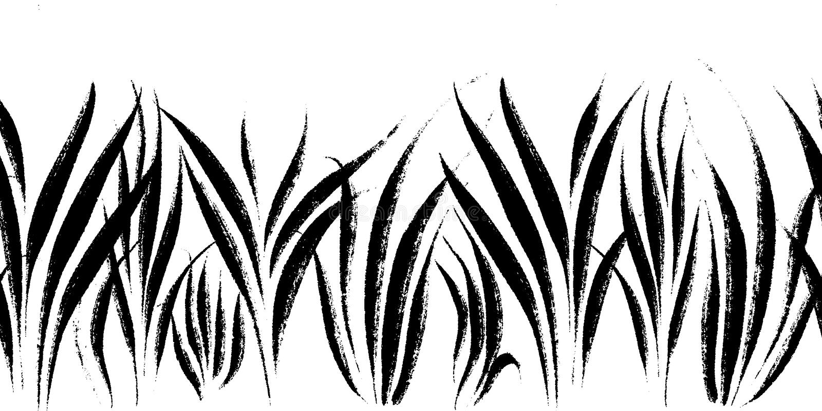 Vector seamless border with ink drawing grass, artistic botanical illustration, isolated floral elements, hand drawn royalty free illustration