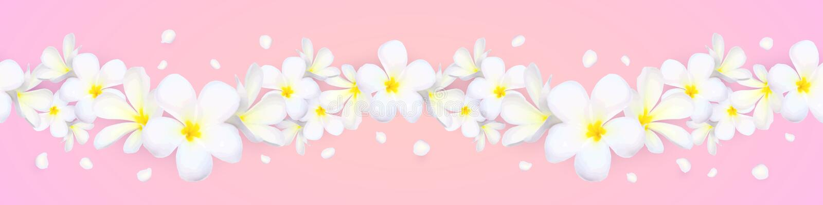 Vector seamless frangipani flowers horizontal border with flying petals on pink background stock illustration