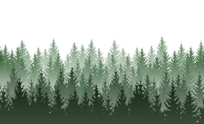 Vector seamless green misty coniferous forest pattern isolated on white background vector illustration
