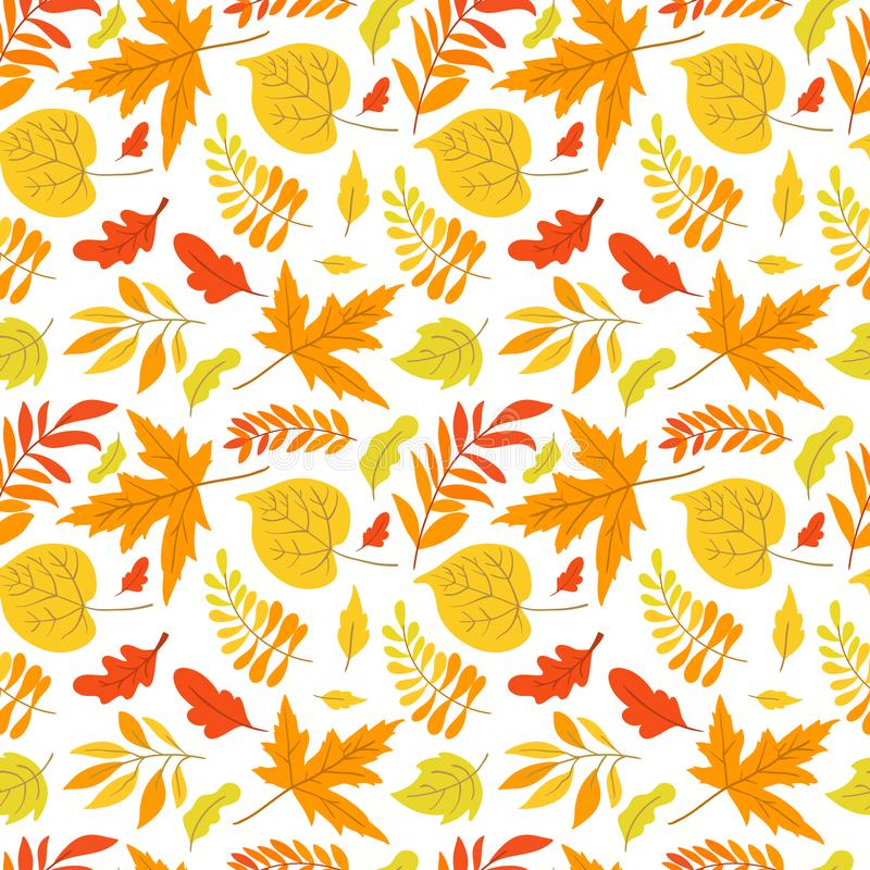Vector seamless pattern with aspen, oak and maple. Vector seamless pattern with oak, maple, aspen leaves and plants on white background. Perfect for wallpaper vector illustration