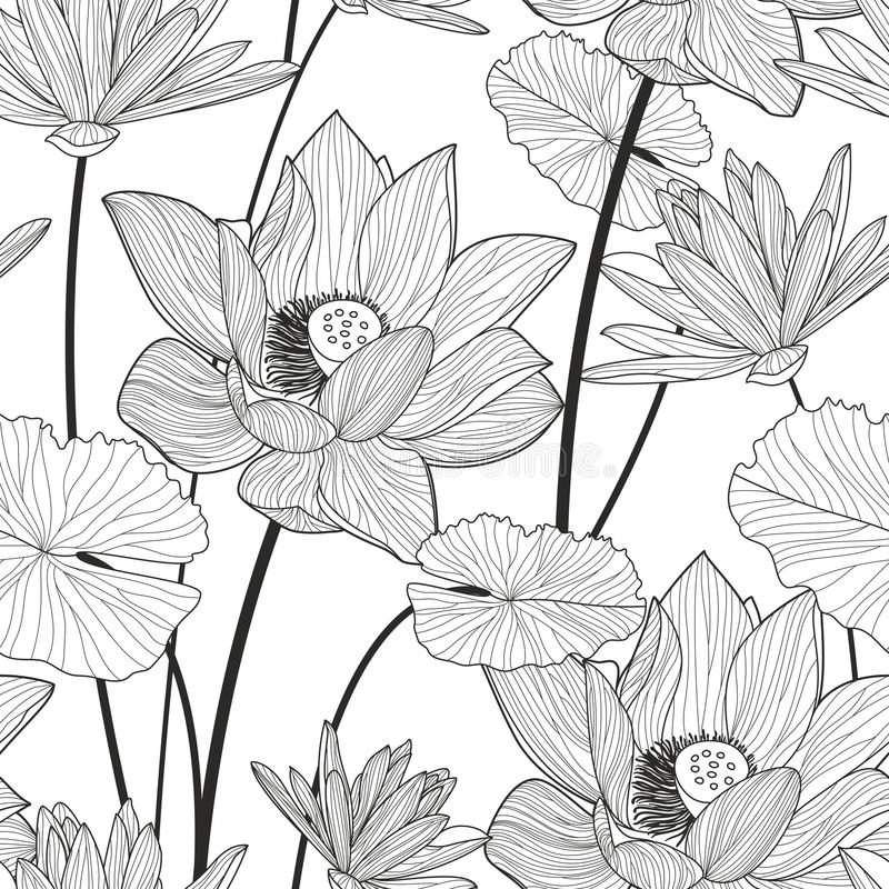 Vector seamless pattern with beautiful lotus flower. Black and w. Hite floral line illustration background vector illustration