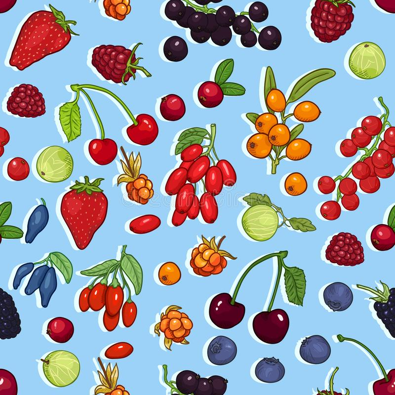 Vector Seamless Pattern of Berries on Background vector illustration