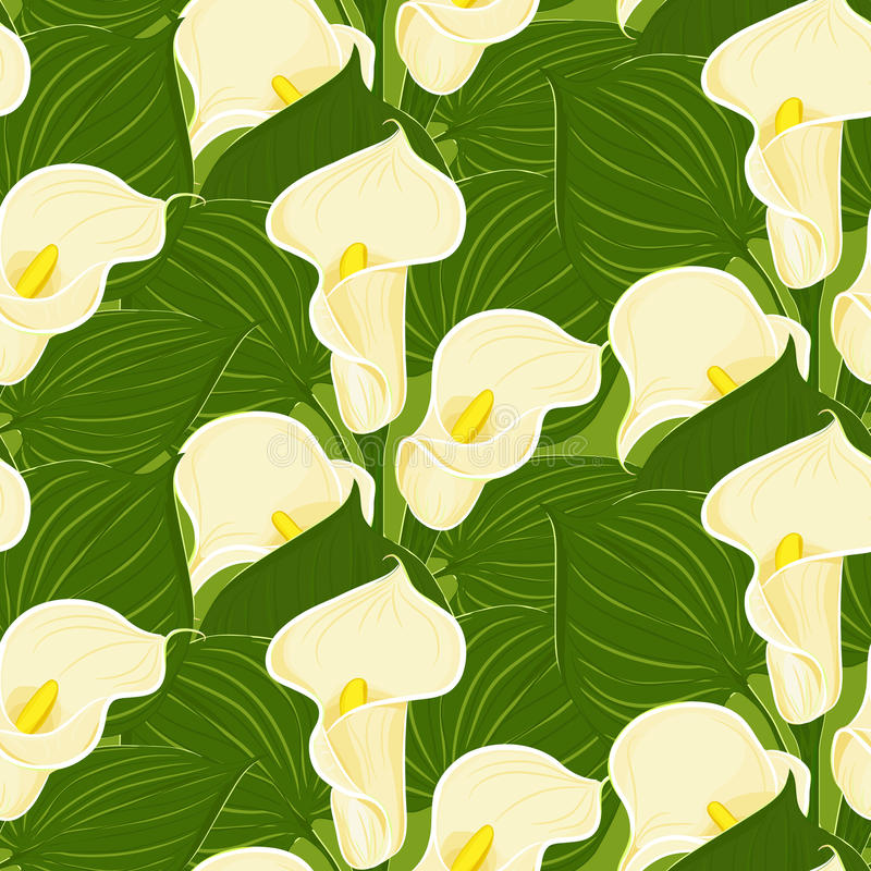 Seamless pattern with calla vector illustration
